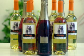 20100124_wine-all.jpg