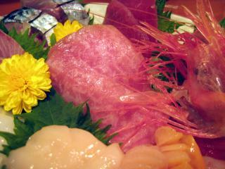20100323_shibata-toro.jpg