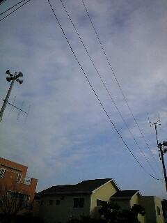 20091228092219.jpg