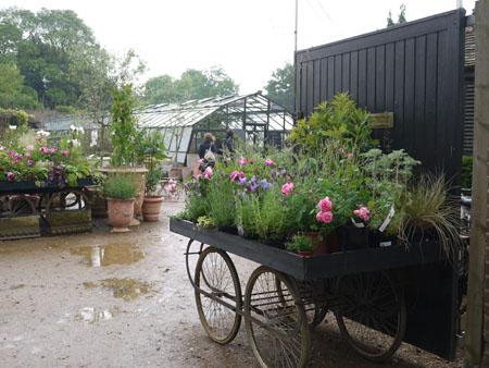 Petersham Nurseries2
