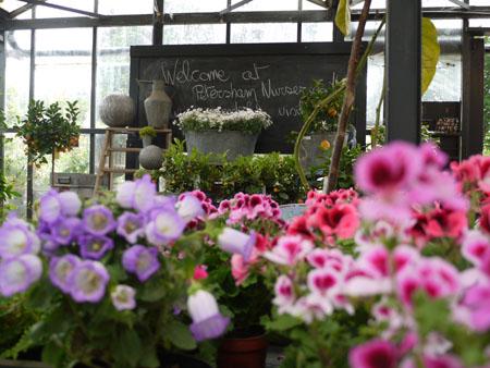 Petersham Nurseries10