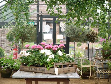 Petersham Nurseries17