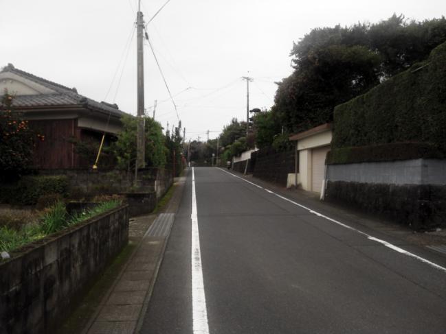 NCM_0089.jpg