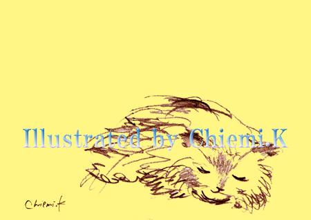 Drw028_sleeping cat