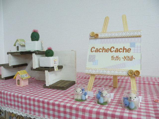cachecache7031