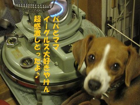 003_20110115102338.jpg