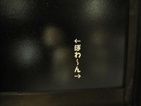 028_20110110102143.jpg