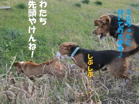 036_20110129181553.jpg