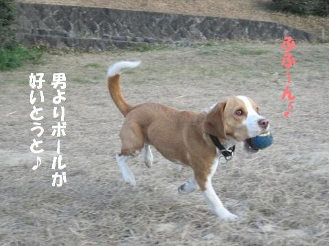 057_20110129205456.jpg