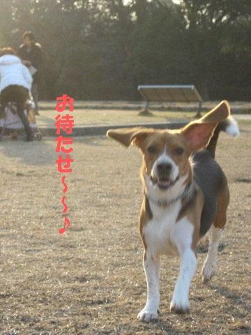 062_20110123220947.jpg