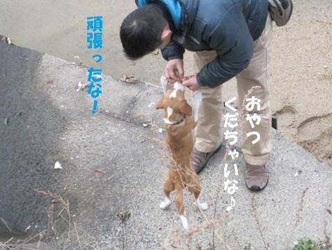 066_20110120210357.jpg