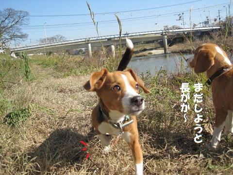 099_20110113084025.jpg