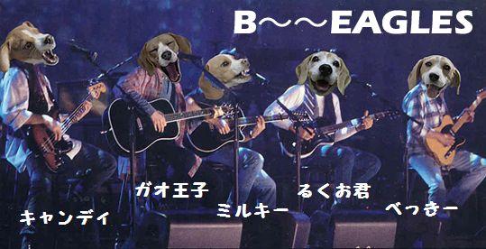 B~~~EAGLES(名前付き)