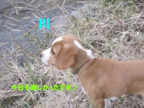 IMG_7781_sh01.jpg