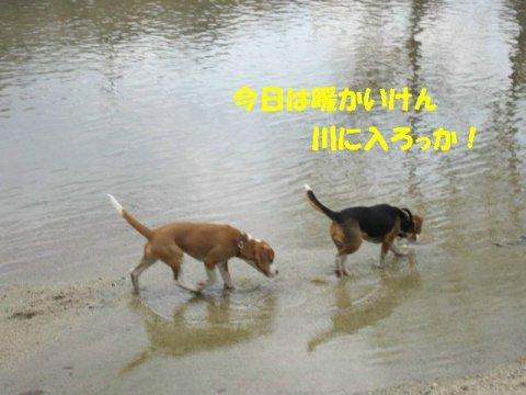 IMG_8900_sh01.jpg