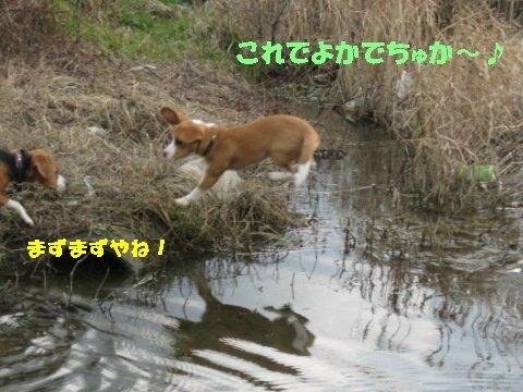 IMG_8924_sh01.jpg