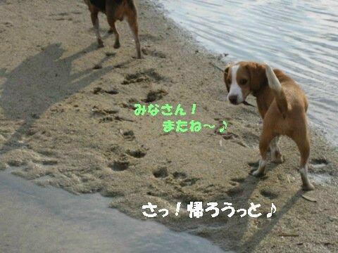 IMG_8938_sh01.jpg