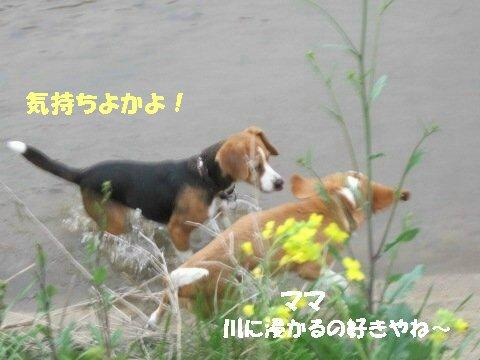 IMG_9769_sh01.jpg