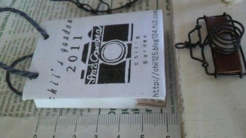 2011010810050000_convert_20110109214131[1]