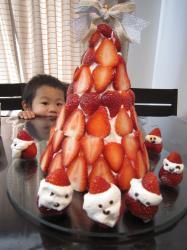 2009christmascake2