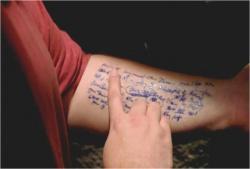 腕にメモしている文字を探しているハーリー