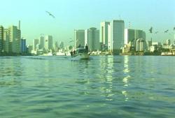 東京湾に一艘のボート