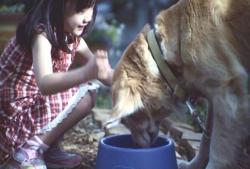 犬と遊ぶ愛美