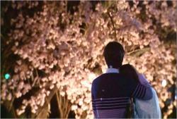 二人で夜桜