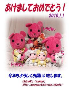 2010_01011000.jpg