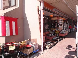 2010_01050002.jpg