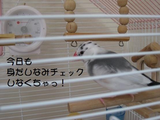 11060201.jpg