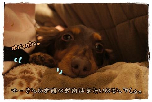 001_20130226213610.jpg