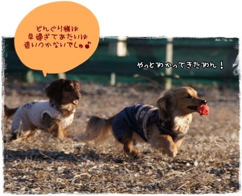 047_20130306212132.jpg