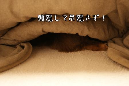 3XF5N.jpg