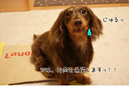 snap_chocola811_201075224623.jpg