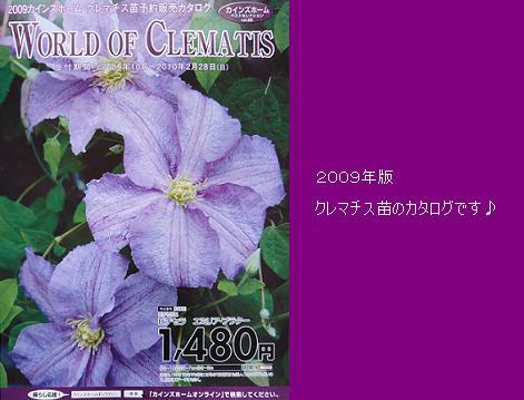 P1180153_カタログ