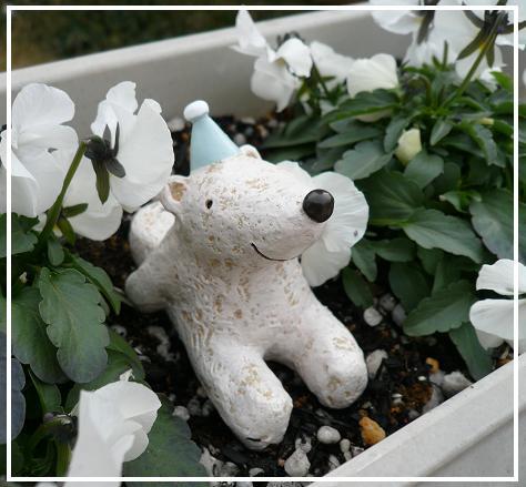 P1170700_bear.jpg