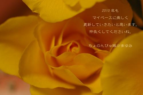 IMGP9716.jpg