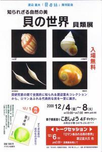 知られざる自然の美 貝の世界 貝類展案内ハガキ