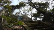 大船-鎌倉26