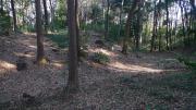 石神井城跡3