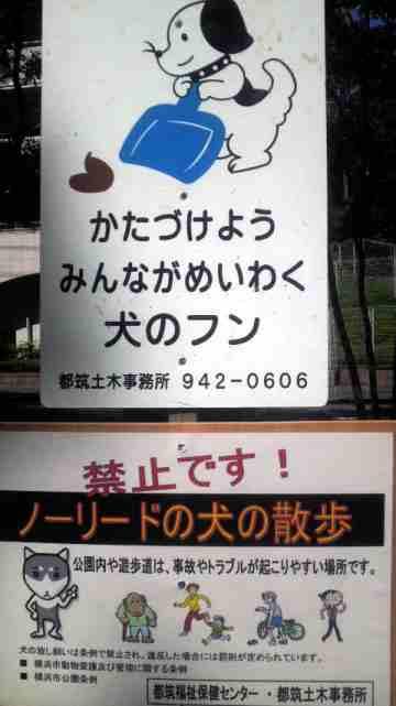 2011091212490000.jpg