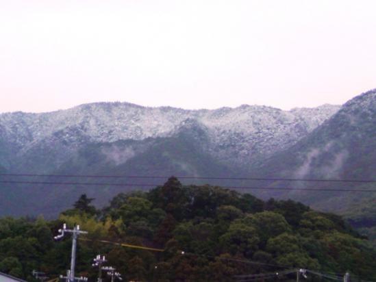2月11日 雪景色