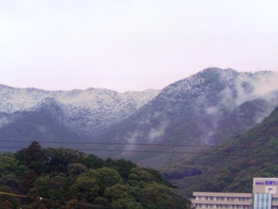 2月11日 雪景色②