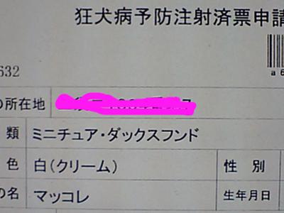 2010030202.jpg
