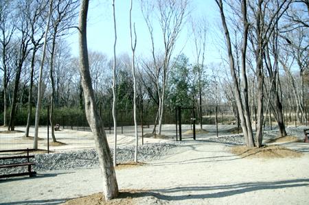 2011031310.jpg
