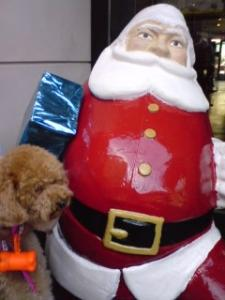 2009navidad6