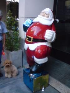 2009navidad2