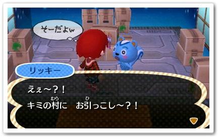 koikoiriki_20130128142041.jpg