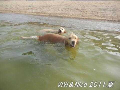 1-2-2vivinicoちゃん1